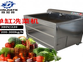 单缸洗菜机视频