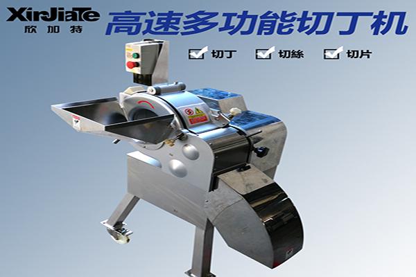 XJT-DN569高速切丁机
