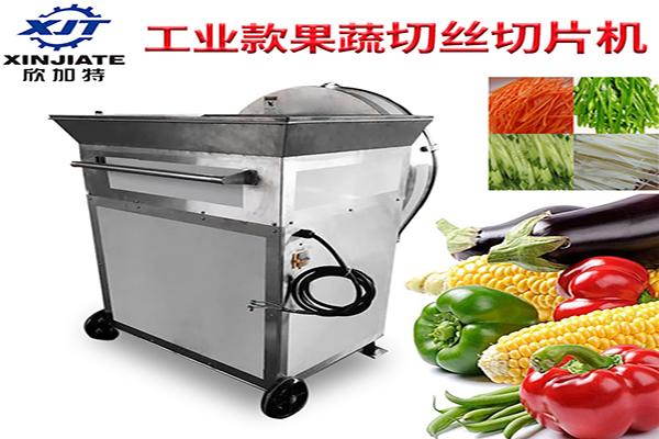 XJT-GG2000(切丝切片)大型果蔬切丝切片机